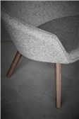 Ditzel Lounge Chair Image